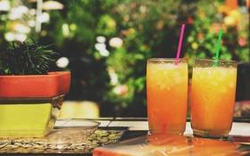 Обои желтый, коктейль, стаканы