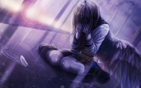 Обои девушка, дождь, крылья, аниме, перья, арт, форма