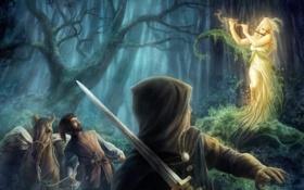 Обои лес, меч, удивление, девушка. путники, арт, лесная нимфа, чаща