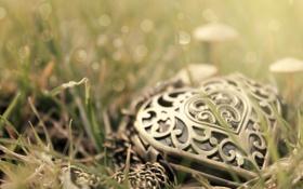 Обои трава, сердце, кулон
