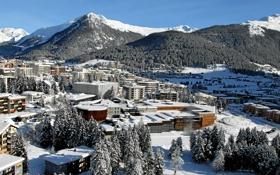 Картинка лес, Davos, город, долина, деревья, дома, зима