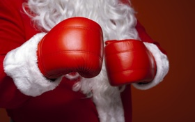 Обои юмор, Рождество, бокс, Новый год, перчатки, christmas, new year