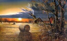 Обои поле, осень, рассвет, птица, урожай, живопись, Jim Hansel