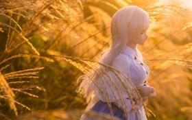 Обои трава, игрушка, кукла, блондинка