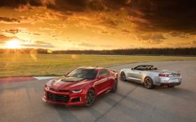 Обои Camaro, шевроле, камаро, Chevrolet