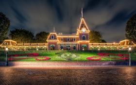Обои цветы, Калифорния, Диснейленд, клумба, California, Disneyland, Микки Маус
