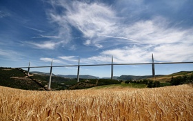 Обои Виадук Милау, мост, пшеница, поле, франция