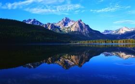 Обои лес, горы, отражение, озеро