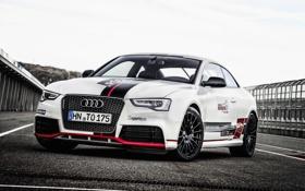 Картинка Concept, Audi, ауди, TDI, Competition, 2015, RS 5