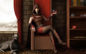 Обои дом, кровь, бокал, собака, кресло, арт, вампир