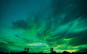 Обои зеленое, ночь, небо