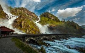 Обои лес, водопады, природа, мост, вода, гора