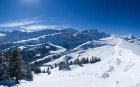 Обои снег, деревья, Горы, лучи солнца
