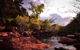 Картинка осень, небо, деревья, тучи, река, камни