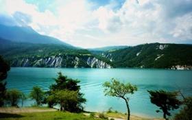 Обои море, зелень, небо, трава, вода, облака, деревья