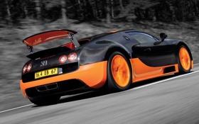 Обои дорога, движение, bugatti veyron