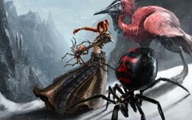 Обои девушка, снег, горы, ветер, птица, паук, лук