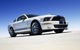Обои widescreen, Mustang, Shelby, ford, auto wallpapers, Cobra GT500