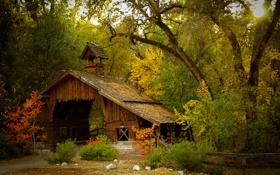 Обои лес, осень, сарай, деревья, природа, сооружение, мост