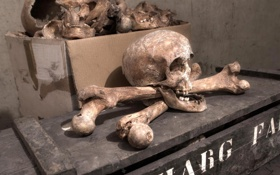 Обои череп, кости, Pirate Treasure