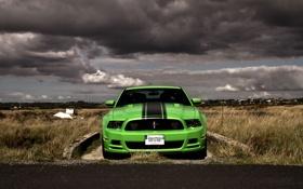 Обои дорога, поле, машина, небо, тучи, зеленый, mustang