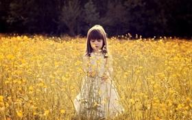 Обои листья, цветы, ветки, природа, настроения, девочка