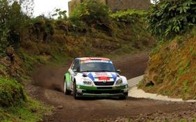 Обои Авто, Спорт, Гонка, WRC, Rally, Ралли, Передок