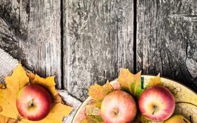 Обои листья, яблоки, стол