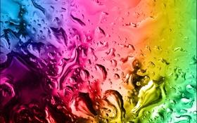 Обои red, yellow, drop, water, colour
