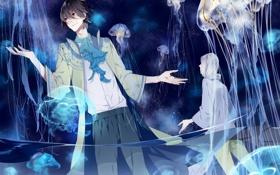 Картинка небо, звезды, ночь, аниме, арт, медузы, парни