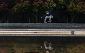 Обои вода, деревья, скамейка, парк, отражение, мусор, прыжок