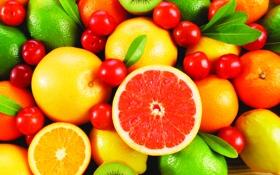 Картинка апельсины, киви, фрукты, лимоны, вишни, грейпфруты