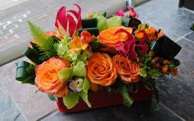 Обои фото, Цветы, Букет, Розы, Орхидеи, Фрезия, Морозник
