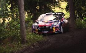 Картинка Лес, Спорт, Машина, Гонка, Citroen, DS3, WRC