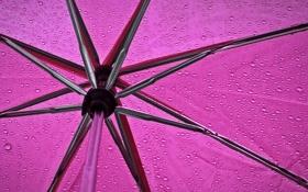 Обои дождь, настроение, зонт, rain under my umbrella