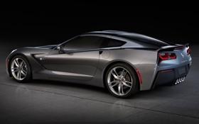 Обои серый, Corvette, Chevrolet, Шевроле, вид сзади, Stingray, Корвет