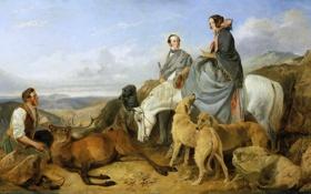 Обои собаки, небо, пейзаж, горы, тучи, люди, лошадь