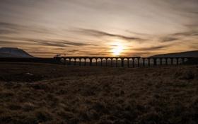 Обои пейзаж, мост, поезд, утро