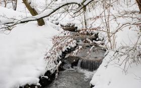 Картинка зима, лес, снег, деревья, ручей, сугробы