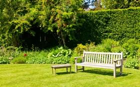 Обои зелень, трава, скамейка, парк, лавочка, кусты, лужайка