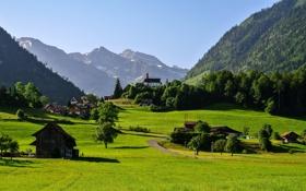 Обои поле, лес, трава, деревья, горы, дома, Швейцария