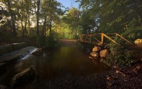 Обои деревья, мост, природа, ручей, фото, рассвет, водопад