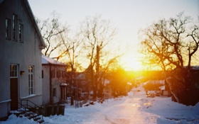 Картинка закат, ветки, небо, солнце, улица, деревья, дома