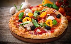 Картинка зелень, green, еда, пицца, food, pizza, начинка
