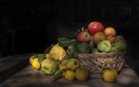 Обои фрукты, яблоко, гранат, груша