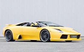 Обои тюнинг, Roadster, Lamborghini, Hamann, Murcielago, хаманн