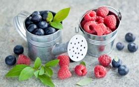 Обои лето, ягоды, малина, черника, лейка, листочки, ведерко