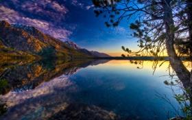 Обои природа, горы, ветка, озеро