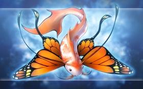Обои существо, бабочка, рыба