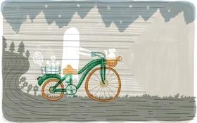 Обои дорога, кот, велосипед